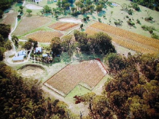 Aerial Photo of Cobaw Ridge Post Vintage 2004 By Ian McKenzie